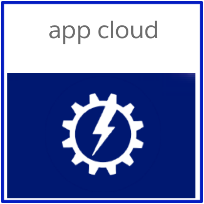Salesforce.com App Cloud