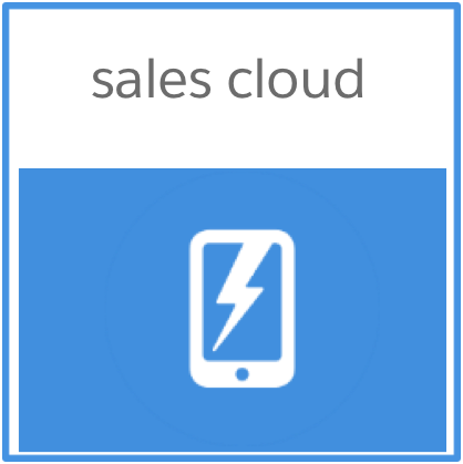 Salesforce.com Salescloud